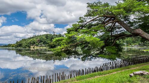 南湖公園 (Nanko Park)