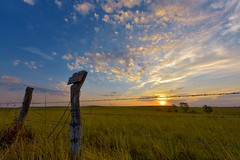 Two Post Sunrise (thefisch1) Tags: cloud cirro cumulus cirrus sky blue pasture green pink post fence barbed wire mottled sunrise sunset horizon tree grass stem prairie jackson county kansas nikon nikkon interesting oogle calendar