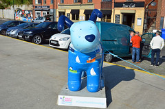 Skipper-B-17-September-2016 (Steve Ellwood Whitley Bay) Tags: greatnorthsnowdogs guidedog mikeclay northshields cliffordsfort ellwood steveellwood skipper joannewishart dfds westernquay fishquay