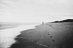 Morning Run (scott.little.images) Tags: film fullframe 135format beach morning running dawn naturallight bw seascape ilford panf nikkormatel grain tauranga newzealand
