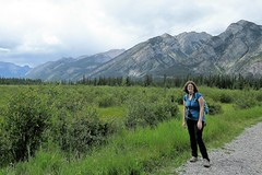 Amy in Awe (Patricia Henschen) Tags: montane forest boreal mountain mountains clouds banffnationalpark alberta canada parks parcs nationalpark rockies canadian northern rockymountains
