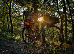 bike at sunset (Michele D'altri) Tags: outdoor bike bicicletta sunset tramonto natura natural green verde fiori flowers street strada cassetta cartello cassette cartel ruote wheels romantico romantic emozioni