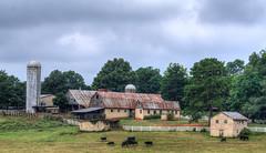 Old Farm (Doug NC (away)) Tags: farm farmville silo texture tinroof northcarolina backroad nikond7000