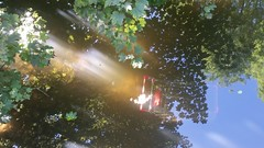 20160829_120829 (Clicking K) Tags: bristol eastville park shopping trolley escher ascension
