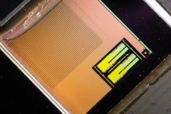 AMD@28nm@GCN_3th_gen@Fiji@Radeon_R9_Nano@SPMRC_REA0356A-1539_215-0862120___Stack-DSC10033-DSC10065_-_ZS-retouched (FritzchensFritz) Tags: macro makro supermacro supermakro focusstacking fokusstacking focus stacking fokus stackshot stackrail amd radeon r9 nano fiji hbm stack interposer gcn 3th gen 28nm gpu core heatspreader die shot gpupackage package processor prozessor gpudie dieshots dieshot waferdie wafer wafershot vintage open cracked