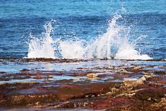 Waves (MIP102) Tags: sydney monavale beach sea waves travel summer photo photographer photography skywalker blue water mip cherry