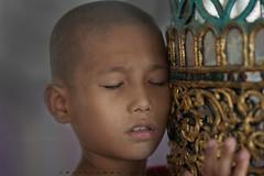 _MG_2854-le-14_04_2016_war-thail-wattanaram-maesot-thailande-christophe-cochez (christophe cochez) Tags: burmes burma birmanie birman myanmar thailand thailande maesot myawadyy monk bonze novice religion watthailwattanaram travel voyage bouddhisme buddhism portrait