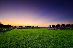 2016/10/04 Scenery in the countryside @ (monbydick) Tags: cloud exposure monbydick nikon scenery sky sunset taiwan         landscape    d600         a012 tamron        rays shimmer evening sunlight