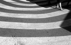 * (Johuhe) Tags: zebra crossing street urban light dark foot walking monochrome black white analog film leica m2 kodak tmax xtol epson v500