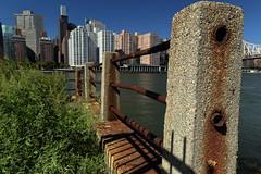 Rusty Railing (Roosevelt Island/NYC) (chedpics) Tags: newyork eastriver rooseveltisland