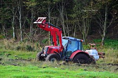 #mandown (Zak355) Tags: rothesay isleofbute bute scotland scottish mishap farming farm tractor oops masseyferguson boggeddown stuck