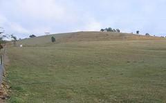 1434 Mt Larcom Bracewell Road, Bracewell QLD