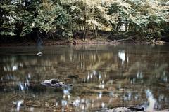 Bidasoa (keko click) Tags: bertizkojaurerriko seorodebertiz bidasoa oieregi navarra ro river longexposure exposicin