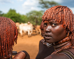 Hamer wives at a bull jumping ceremony in the Omo Valley (Omo Valley, Ethiopia 2014) (Alex Stoen) Tags: 1dx africa african alexstoenphotography bulljumping canoneos1dx culture ef1635f28liiusm ethiopia geotagged hamer keske look natgeo nationalgeographicexpeditions omovalley pocketwizard tradition travel tribes ukulibula vacation offshoeflash surprise