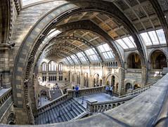 Natural History Museum (mg photography2) Tags: london natural history museum light architecture architectural fisheye tourism travel england uk europe canon canonuk