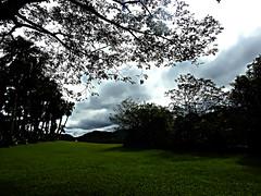 DSCN0014 The earth where we living (tsuping.liu) Tags: outdoor landscape lighting sky serene nature natureselegantshots naturesfinest photoborder perspective tree cloud colorofsky