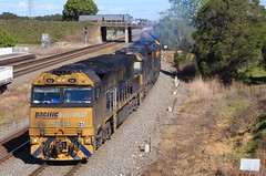 9214 TT110 and TT120 blast through Tarro station on an empty PN coal train (bukk05) Tags: pn pacificnational newsouthwales nsw emd16710g3ces electromotivediesel emd truck signal mainline newcastle hunter huntervalley coal canon60d canon zoom artc australia standardgauge sg railwaystations railwaystation station diesel freight flickr horsepower hp locomotive loco photography photo c44aci ugl tarro tamron16300 tamron rp3 tracks trains train rail railways railroad railpage railway ttclass tt120 tt110 92class engine export explore world rpaunsw92class9214 rpaunsw92class 9214