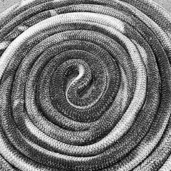 curl (hansntareen) Tags: curl rope pattern coil