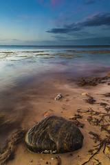 Lonely rock (RuneKC) Tags: denmark sealand ordrup water sunset rocks shore sea bay beach seaweed sand