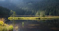 Kleiner Arbersee IX (schauplatz) Tags: bayerischerwald bayerwald deutschland lamerwinkel urlaub kleinerarbersee landscape seascape lake karsee bavarianforest spiegelbild mirrorimage spiegelung forest wald tarn cirquelake