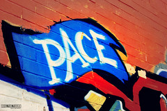 Peace Y'all. (#odie.the.thiiird) Tags: italy rome roma canon photography eos graffiti italia peace fotografie photographie ciao pace pinoy eternal fotografa cuty banzon fotoraflk    tumblr instagram odieson  odiethethiiird