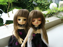 . () Tags: bjd bb dz zhuwei dollzone