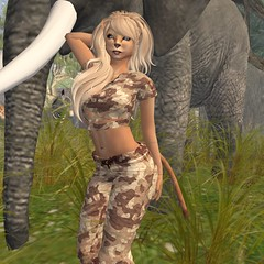 Lioness in Zoo (Alea Lamont) Tags: female cat feline skins leo skin african avatar lion safari afrika lioness lamont alea hyprid truthhair ndmd