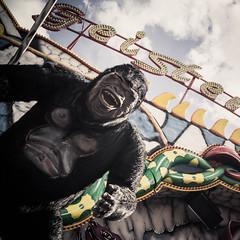 Frhlings Volksfest (dob_bee) Tags: riesenrad achterbahn freefalltower zuckerwatte geisterbahn rummel volksfest frhling sonne glcklich