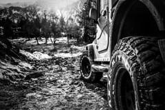 Off-Roader (DaV!v!) Tags: thar offroading offroader monochrome blackandwhite flares light sunrays sunrise 4x4 tyres deadtrees mountains manali rohtangpass