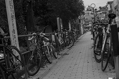 leader (edwardpalmquist) Tags: harajuku shibuya tokyo japan travel city street urban blackandwhite monochrome bike bicycle outdoors