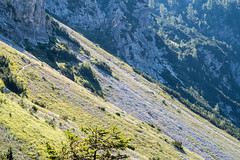 IMG_0447 copy (Bojan Marui) Tags: lepena velika baba velikababa krnskojezero
