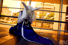 Undertale 24 (MDA Cosplay Photography) Tags: undertale frisk chara napstablook asriel cosplay costume photoshoot otakuthon 2016 montreal quebec canada undertalecosplay fun