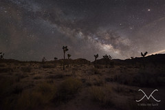 Desert Night Hike (Mike Ver Sprill - Milky Way Mike) Tags: windmill abandoned wall street mill milky way stars star trails night sky mike michael ver sprill versprill astrophotography astronomy mv nightscape nightscapers urbex travel explore joshua tree national park cali california desert mountain light polution starrylandscapestacker nikon d800 long exposure outdoor midnight explorer hike starry landscape stacker