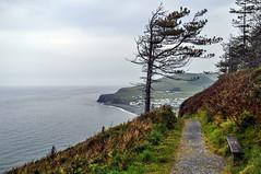Round Wales Walk 42 - Walking North (Nikki & Tom) Tags: walescoastpath ceredigion wales uk sea coast path track cliffs bay