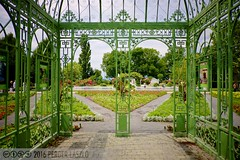 PLW_5587 (Laszlo Perger) Tags: wien vienna sterreich austria blumengarten hirschstetten flowergarden