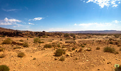 Paysage saharien (Ath Salem) Tags: algrie bchar naama ain sefra dsert sahara dunes sables beni ounif figuig hamada      promenade tourisme dcouverte