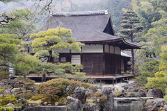 Rainy Day in Kyoto (Alexander.W.Photography) Tags: 2014 2015 2016 ancient buddhism best culture d610 green honshu japan japn japani japon japanese nature nihon nikon nippon red shintoism shinto summer tradition travel travelling view world