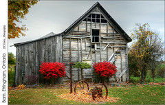 Barn, Effingham, Ontario (jwvraets) Tags: red shrub barnderelict effingham fall autumn opensource rawtherapee gimp nikon d7100 nikkor18105mvr
