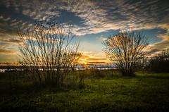 Last green days (alex.salt) Tags: clouds dusk landscape public sunset pentaxk5 sigma1770mmf284dcmacrooshsmc013 17mm