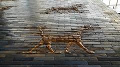 Ishtar Gate (canaanite98) Tags: babylon iraq irak babel babil pergamon museum assyria babylonia neebuchednezzar wall ishtar gate germany deutschland