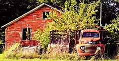 in stealth mode...(HTT) (BillsExplorations) Tags: stealth truck truckthursday ford fordtruck old vintage rust salvageyard junkyard abandoned decay ruraldecay forgotten discarded illinois abandonedillinois