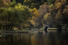 Another Lucky Escape (Sir Clicksalot) Tags: october loch chon scotland 2016 70d ard trossachs