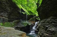 Green Serenity (DK Photographics) Tags: newyork watkinsglen watkins glen ny statepark waterfall pentaxk5 pentax k5