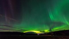 Aurora (JH') Tags: nikon nikond5300 nature northernlights d5300 exposure trees tree auroraborealis aurora autumn fall field forest heaven landscape longexposure borealis sky sigma sweden 1020 2016