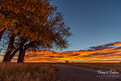 October 16, 2016 - A beautiful sunrise from the Rocky Mountain Arsenal. (Tony's Takes)