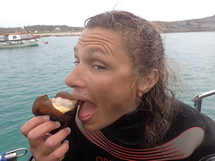 mmm tasty nudibranch (richie rocket) Tags: scillies seasearch scillyisles cornwall uk