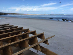 20161016-00022.jpg (tristanloper) Tags: florida palmcoast a1a hurricanematthew palmcoastflorida palmcoastfl damage cleanup hurricane atlanticocean
