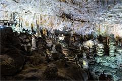 161016 667 grotta gigante (# andrea mometti | photographia) Tags: grotta gigante trieste sgonico caverna stalagtiti stalagmiti umidit
