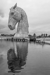 "The Kelpies IV • <a style=""font-size:0.8em;"" href=""http://www.flickr.com/photos/53908815@N02/29775593623/"" target=""_blank"">View on Flickr</a>"