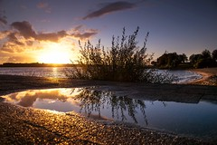 Sunset in lines (marielledevalk) Tags: sun sunset river water reflection clouds sky tree beach road